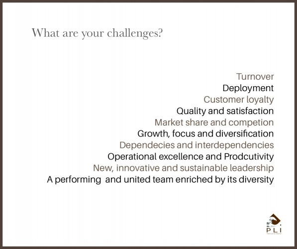 What are your challenge- SANS CADRE